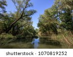 landscape in the danube delta ... | Shutterstock . vector #1070819252