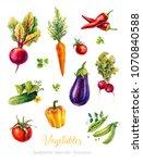 vegetables. set of watercolor... | Shutterstock . vector #1070840588