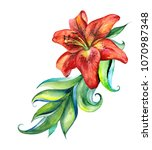 painted red lilies. bouquet.... | Shutterstock . vector #1070987348