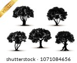 collection  tree silhouette... | Shutterstock .eps vector #1071084656