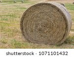 close up of round straw bale on ... | Shutterstock . vector #1071101432