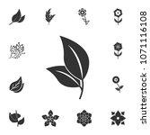 leaf icon. detailed set of...