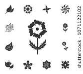 flower icon. detailed set of...   Shutterstock . vector #1071122102
