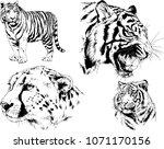 vector drawings sketches... | Shutterstock .eps vector #1071170156