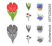 a bouquet of fresh flowers...   Shutterstock .eps vector #1071226202