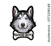 siberian husky dog. bone. good... | Shutterstock .eps vector #1071248168