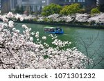 kema sakuranomiya park osaka  ... | Shutterstock . vector #1071301232