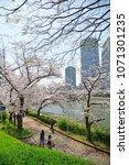 kema sakuranomiya park osaka  ... | Shutterstock . vector #1071301235
