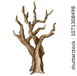 Watercolor Bare Tree Isolated...