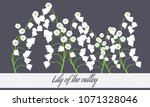 may lily. vector illustration... | Shutterstock .eps vector #1071328046