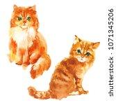 cute little red kitten... | Shutterstock . vector #1071345206