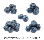 blueberry set isolated on white ... | Shutterstock . vector #1071408875