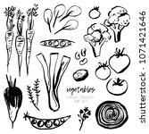 vector set of hand drawn...   Shutterstock .eps vector #1071421646