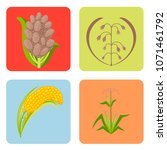 cereal seeds grain product... | Shutterstock .eps vector #1071461792