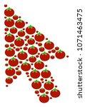 mouse cursor mosaic of tomato...