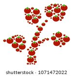 flora plant composition of... | Shutterstock . vector #1071472022