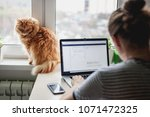 Stock photo girl student freelancer working at home on a task the cat is sitting on the window 1071472325