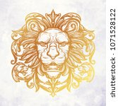 head of lion. isolated vector... | Shutterstock .eps vector #1071528122