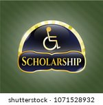 shiny emblem with disabled ...   Shutterstock .eps vector #1071528932