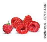 fresh  nutritious and tasty... | Shutterstock .eps vector #1071616682