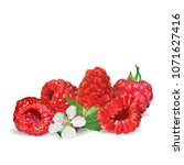 fresh  nutritious and tasty... | Shutterstock .eps vector #1071627416