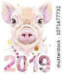 Cute Piggy. Pig For T Shirt...