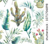 watercolor cactus and palm... | Shutterstock . vector #1071706898
