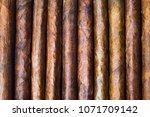 Small photo of Cuban cigars background tobacco pattern flat lay
