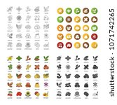 spices icons set. flavoring ... | Shutterstock .eps vector #1071742265