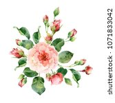 corner floral composition of... | Shutterstock . vector #1071833042