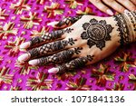 indian bridal showing bridal... | Shutterstock . vector #1071841136