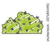 doodle nature leaves bushes... | Shutterstock .eps vector #1071851492