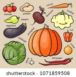 set of colorful vegetables ... | Shutterstock .eps vector #1071859508