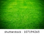 Spring Green Grass For Design