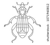 beetle icon. simple element... | Shutterstock .eps vector #1071960812
