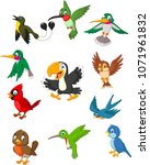 cartoon birds collection set | Shutterstock .eps vector #1071961832
