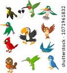 cartoon birds collection set | Shutterstock .eps vector #1071961832