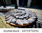 shark fins were dry under the... | Shutterstock . vector #1071973292