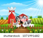 Cute Farm Animals In Front Of...