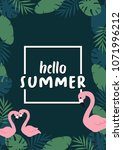 hello summer banner with... | Shutterstock .eps vector #1071996212