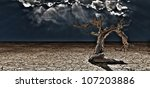 Old Desert Tree - stock photo