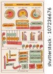 infographic elements | Shutterstock .eps vector #107236676