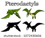 pterodactyls in green and... | Shutterstock .eps vector #1072430606