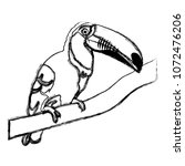 grunge beauty toucan bird...   Shutterstock .eps vector #1072476206