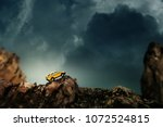 Four by four off road car crossing through the country road. Travel and racing concept for four wheel drive off road vehicle . - stock photo