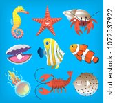 various marine animals you can...   Shutterstock .eps vector #1072537922
