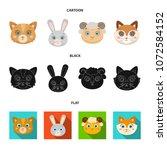 cat  rabbit  fox  sheep. animal ...   Shutterstock .eps vector #1072584152