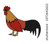 color rooster farm animal with...   Shutterstock .eps vector #1072642622