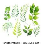 green leaves set isolated on... | Shutterstock .eps vector #1072661135