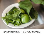 fresh epazote and green tomato  ...   Shutterstock . vector #1072750982